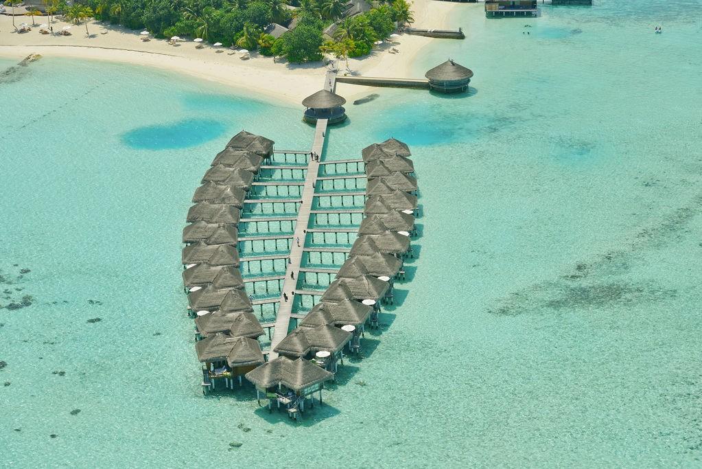maldive-maafushivaru.jpeg